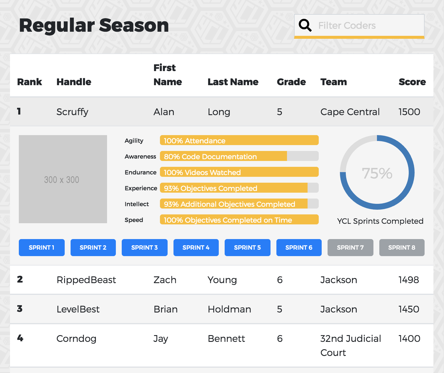 Youth Coding League website statistics preview